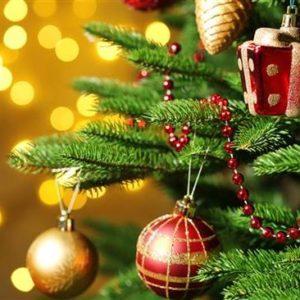 Decoración de árboles de Navidad ideas y fotos